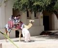 Al Bastakiya Dubai Tourism