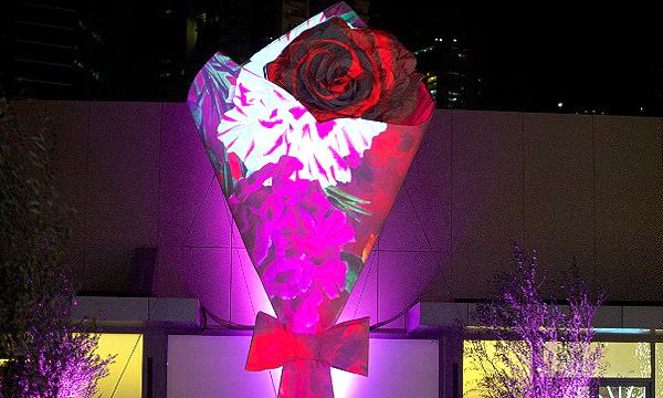 Serenade - Dubai Festival of Lights 2014
