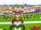 miracle-garden-dubai-04