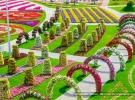 miracle-garden-dubai-07
