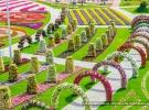 miracle-garden-dubai-25