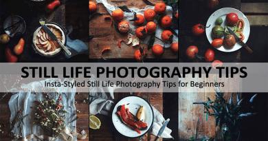 Still Life Photography Tips