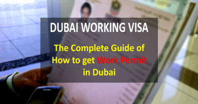 Dubai Working Visa : The Complete Guide of How to get Work Permit in Dubai
