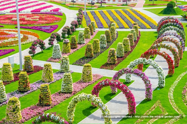 Beautiful Flower Gardens Of The World dubai miracle garden: the most beautiful and largest flower garden