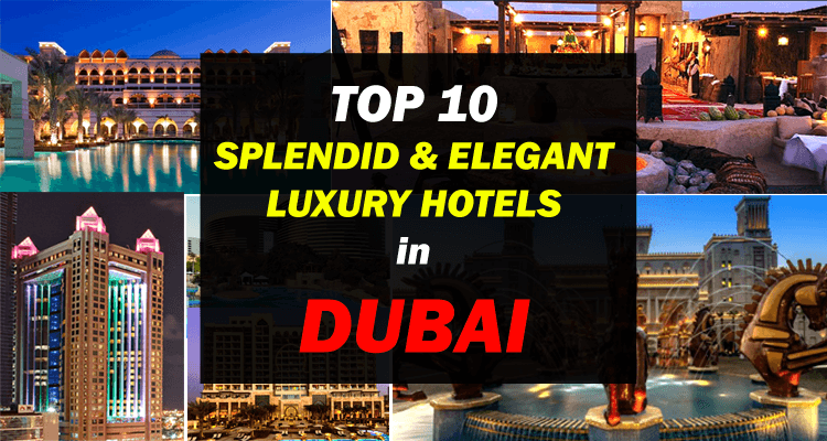Top 10 splendid and elegant luxury hotels in dubai for 10 best hotels in dubai